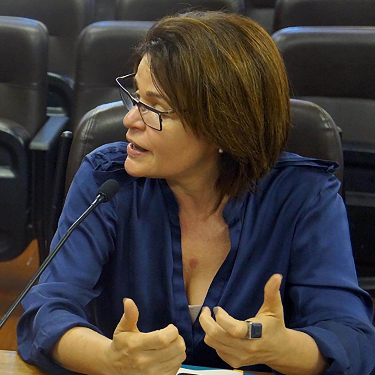 Ana Luisa Zaniboni Gomes